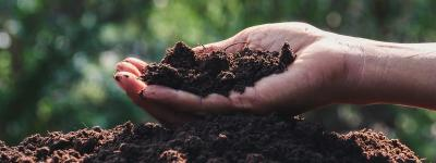 Do the World a Favour and Compost!